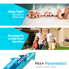 We have effective treatment methods against tough pest like bed bugs