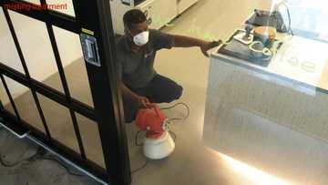 Medium 1027 misting treatment 2016 07 11 180311