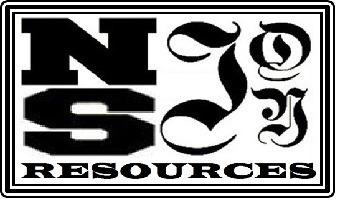 Medium nsaj logo2