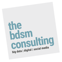 The BDSM Consulting Sdn. Bhd.