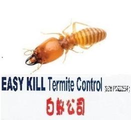 EasyKill Termite Control