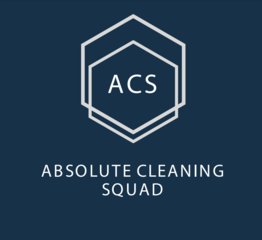Absolute Cleaning Squad