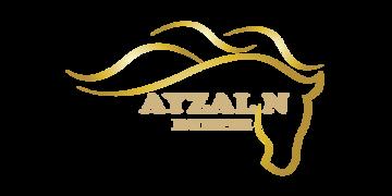 Ayzal N Enterprise