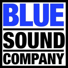 Medium bluesound hi res