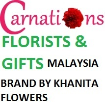 Carnations Gifts
