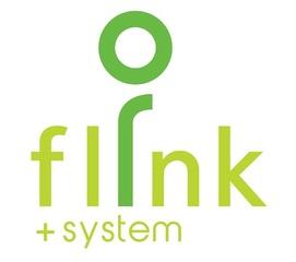 Flink System