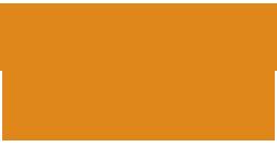 Medium lepidor logo