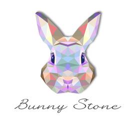 Medium bunny diamond 01